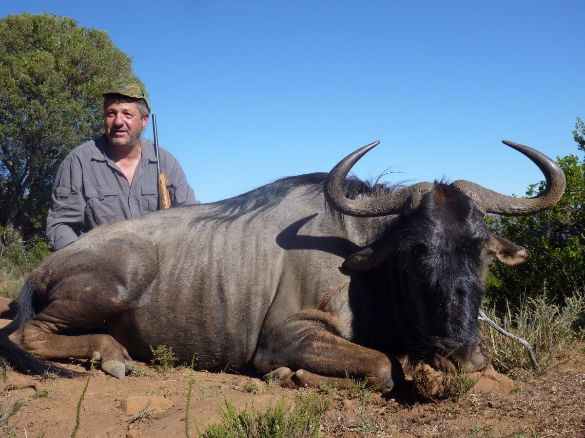 Big 5 Hunting South Africa
